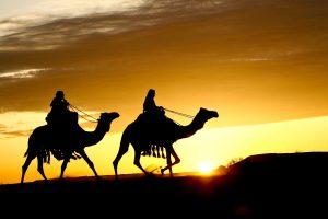 Perbedaan Nabi dan Rasul,1.jelaskan perbedaan nabi dan rasul,perbedaan nabi dan rasul terletak pada,tuliskan 3 perbedaan nabi dan rasul,6 perbedaan nabi dan rasul,nabi adalah,di bawah ini yang menjadi perbedaan nabi dan rasul adalah,perbedaan nabi dan rasul terletak pada sifat,pertanyaan tentang perbedaan nabi dan rasul